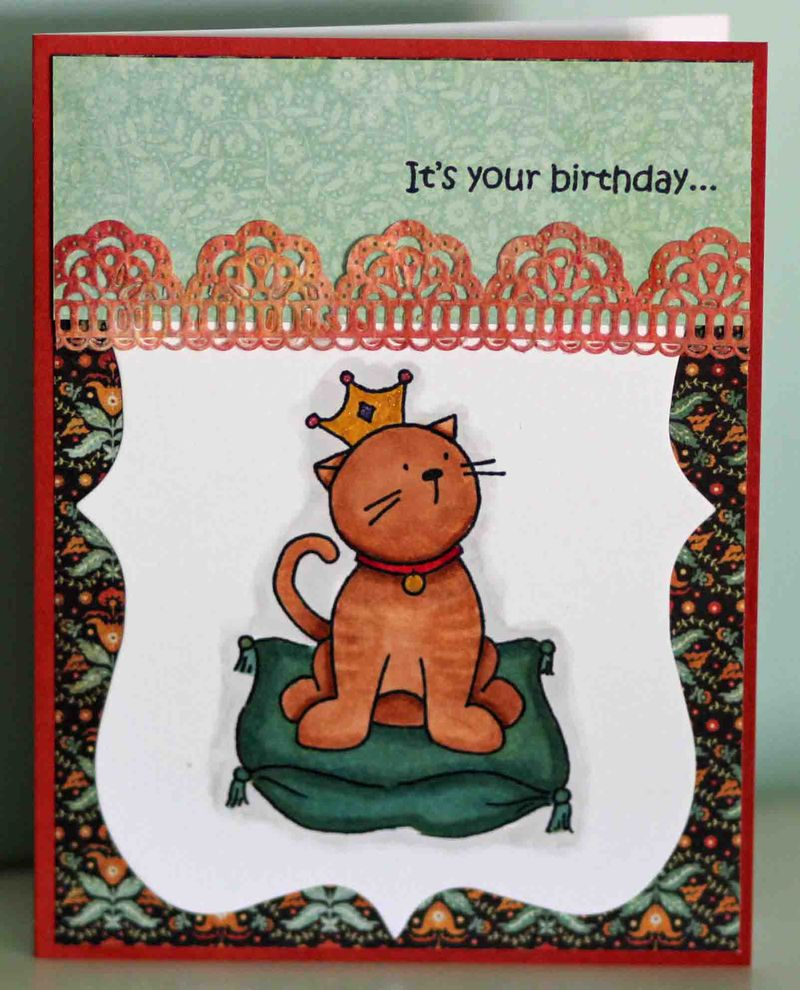 Its your birthday cat card