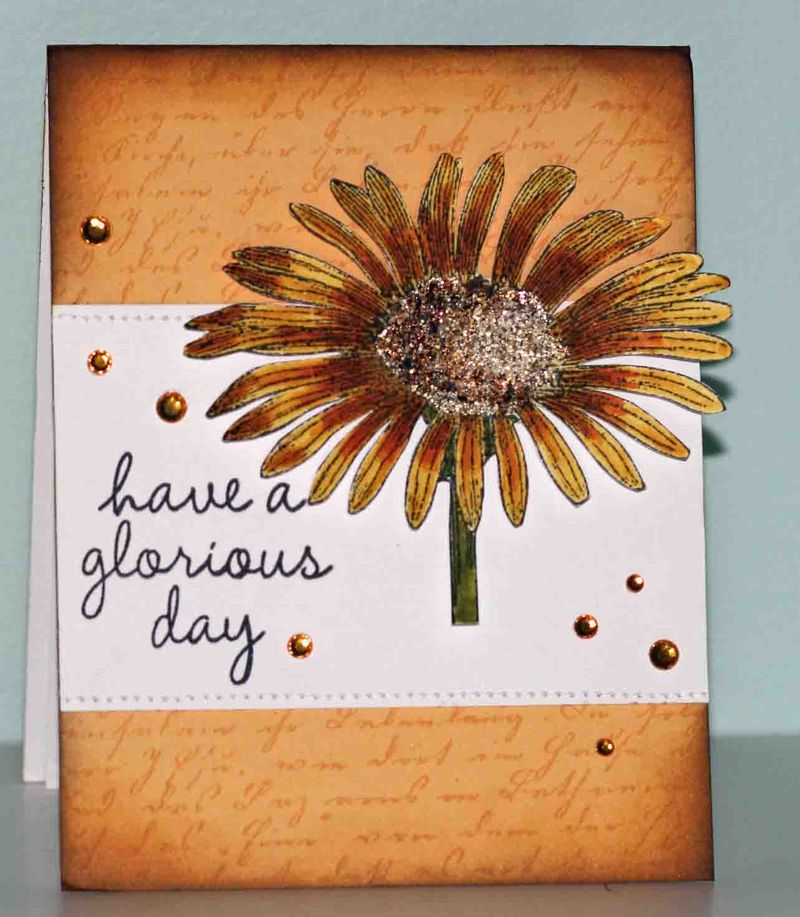 Card from Joy Taylor