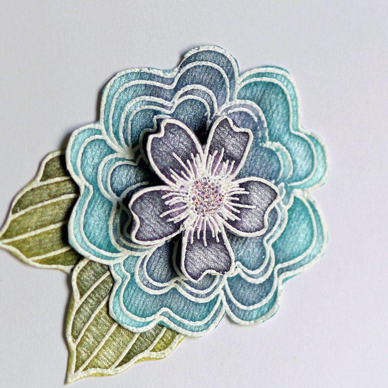 070411 Friendship blue flower card close up 1