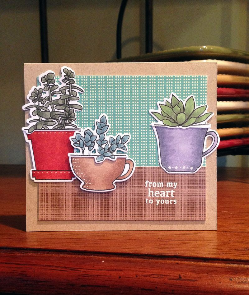 From my heart succulents card