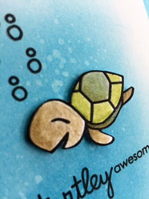 Rsz_turtley_awesome_card_close_up