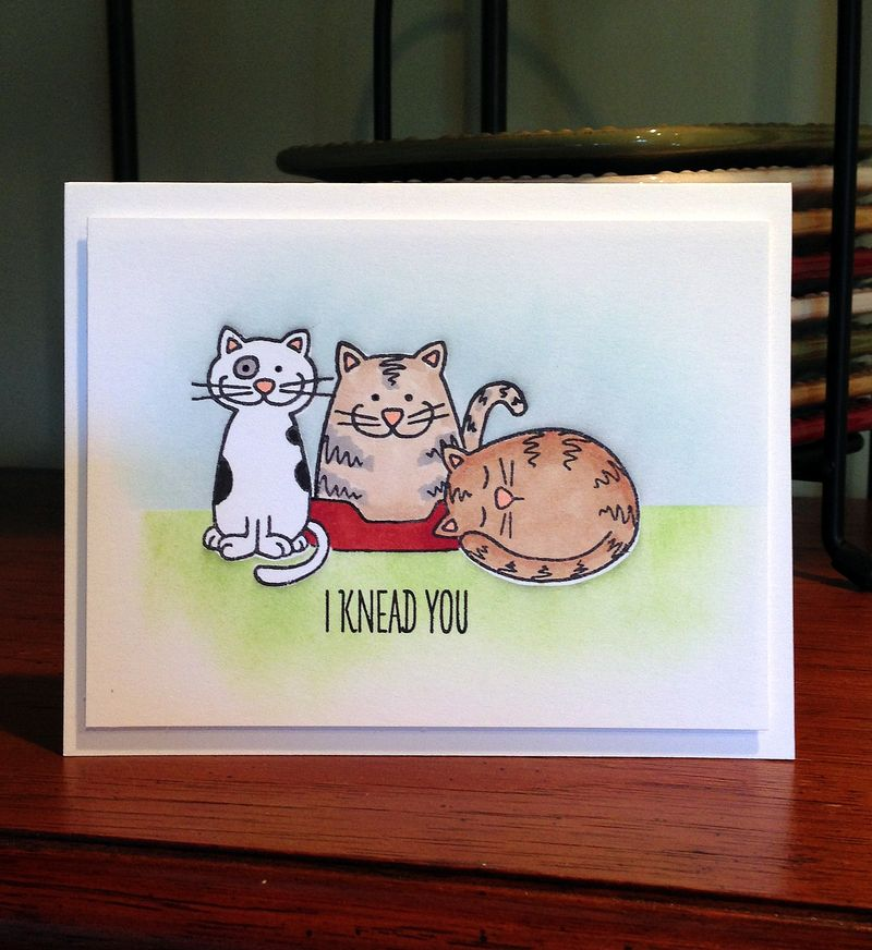 I knead you three kitty card