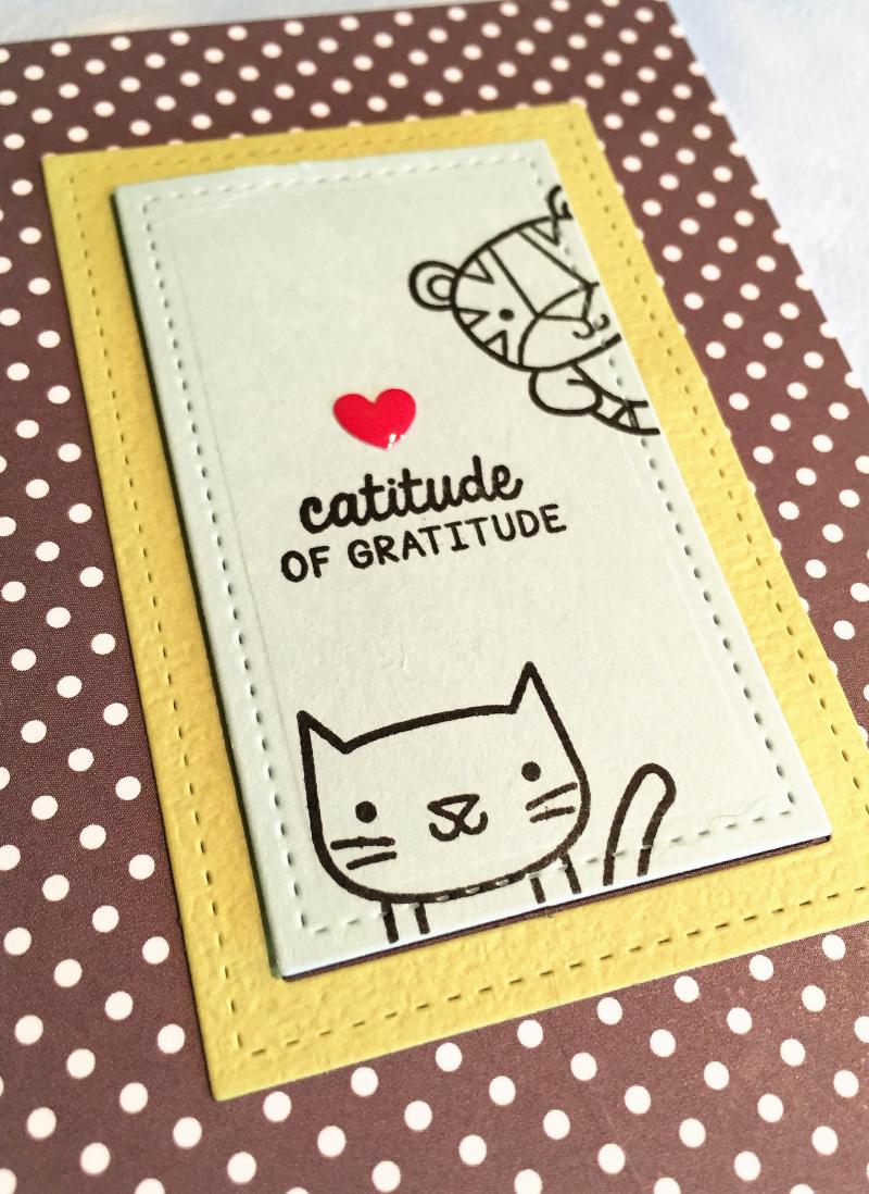 Catitude close up card 1