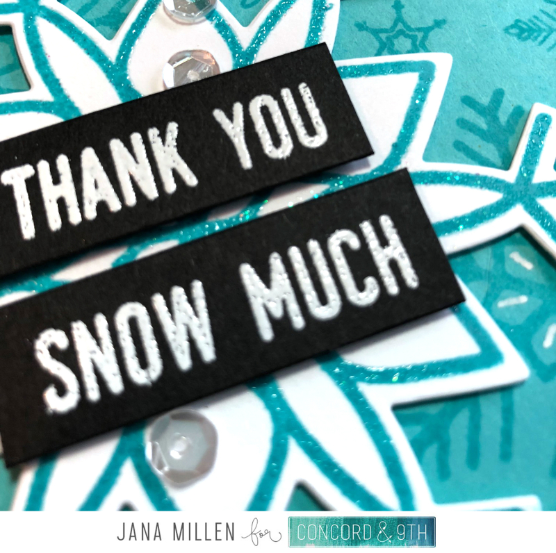 Thank you snow much card close up with footer