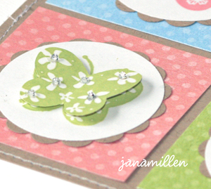 Four_butterflies_close_up_1